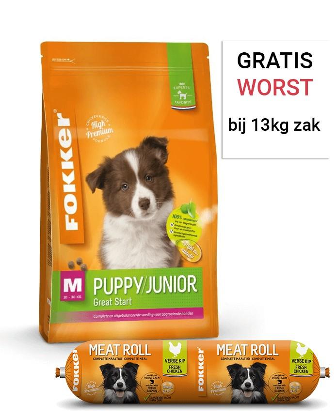 Fokker Puppy/Junior M