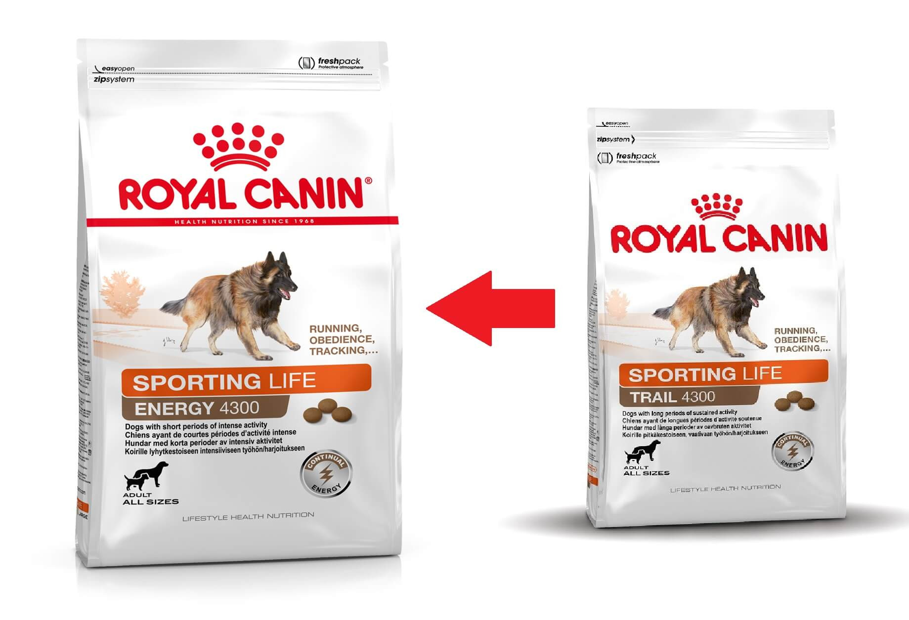 Royal Canin Sporting Life Trail 4300 hondenvoer