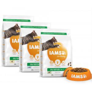 Iams for Vitality combi pack Vis/Lam/Kip kattenvoer