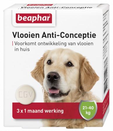 Beaphar Vlooien Anti-Conceptie 21 - 40 kg