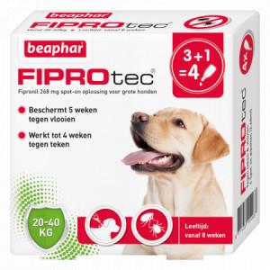 Beaphar Fiprotec Spot-On voor honden van 20 tot 40 kg 12 pipetten