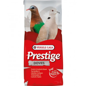 Versele-Laga Prestige Tortelduif