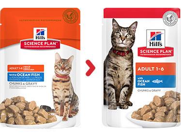 Hill's Adult Pouch Zeevis kattenvoer