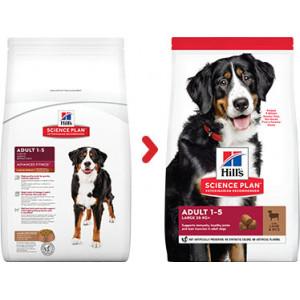Hill's Adult Large Breed lam & rijst hondenvoer