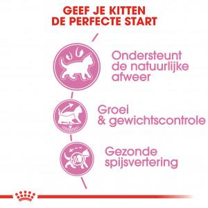 Royal Canin Kitten Sterilised kattenvoer