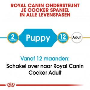 Royal Canin Puppy Cocker Spaniel hondenvoer