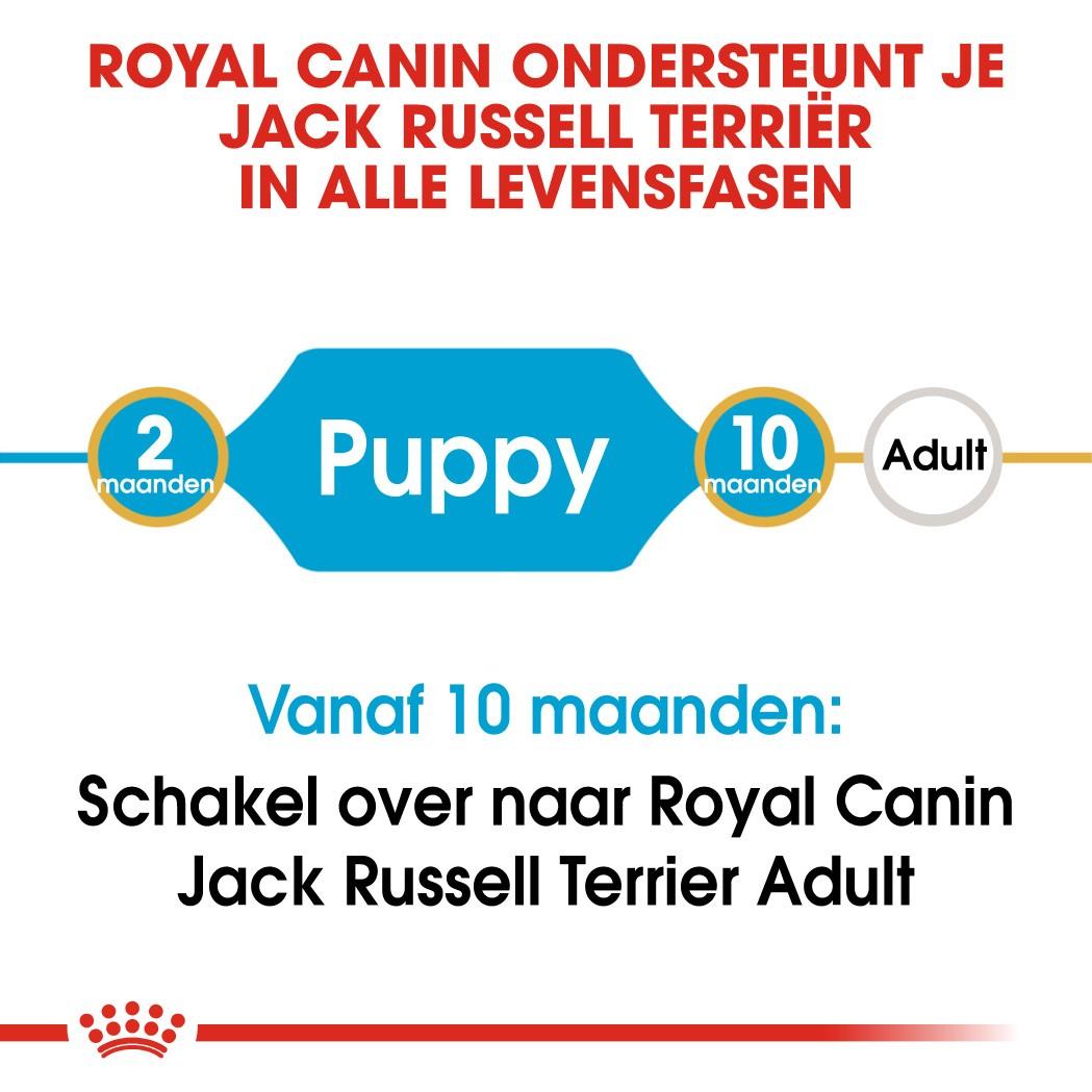 Royal Canin Puppy Jack Russell Terriër hondenvoer