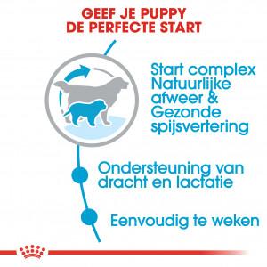 Royal Canin Giant Starter Mother and Babydog hondenvoer