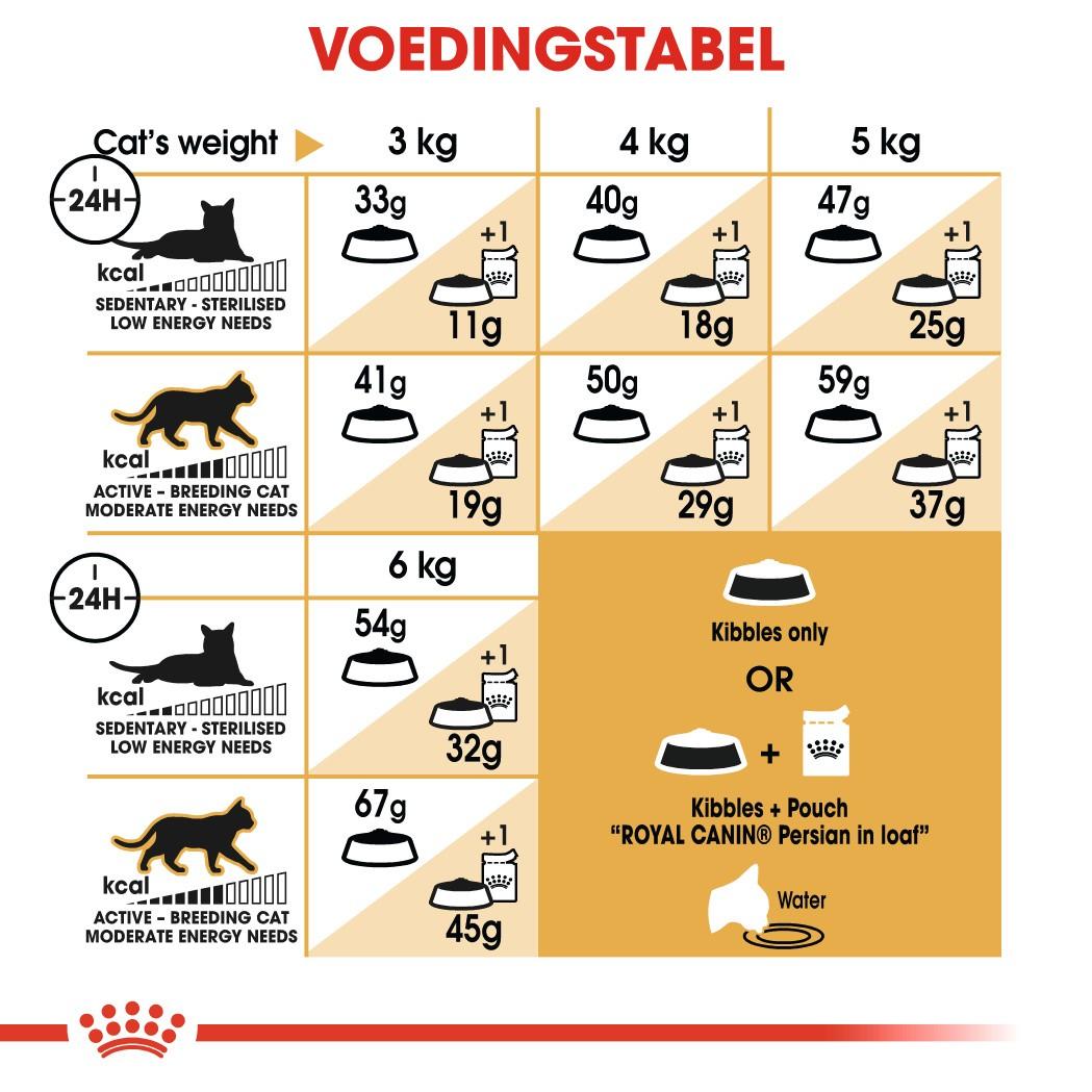 Royal Canin Adult Persian kattenvoer