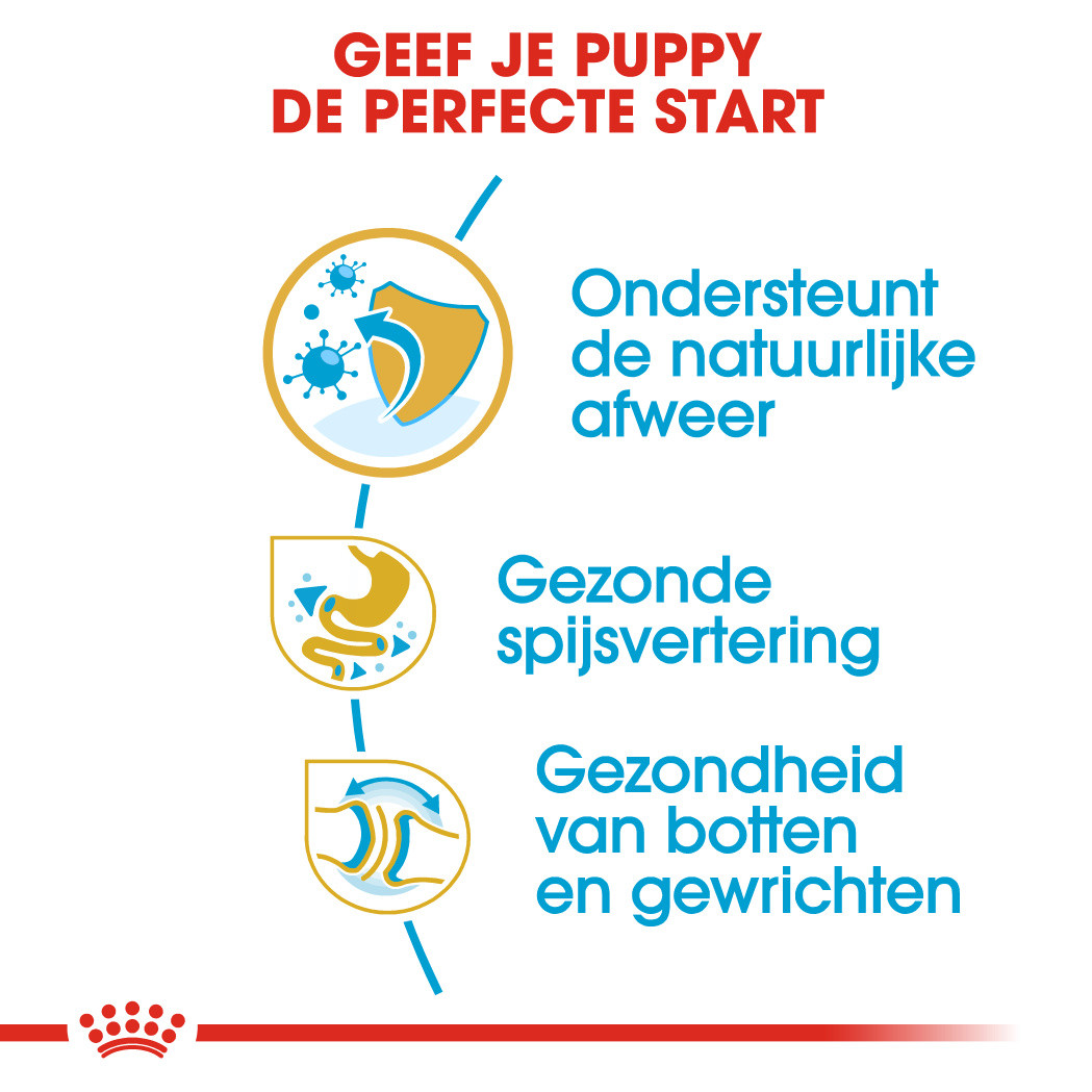 Royal Canin Bulldog Junior/ Puppy hondenvoer