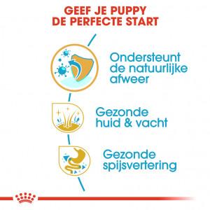 Royal Canin Puppy Golden Retriever hondenvoer