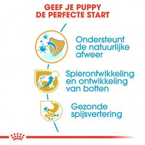 Royal Canin Puppy Rottweiler hondenvoer