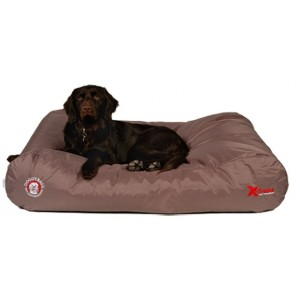Doggybag X-treme Fossil voor de hond Small