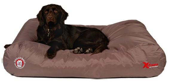 Doggybag X-treme Fossil voor de hond