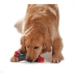 Petstages Orka Stick voor honden