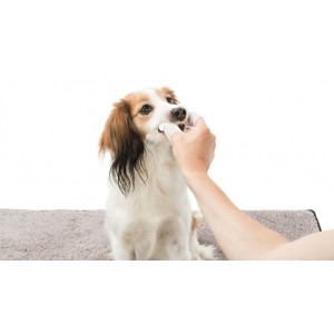 Trixie vingerpads tandreiniging voor hond en kat 50 st