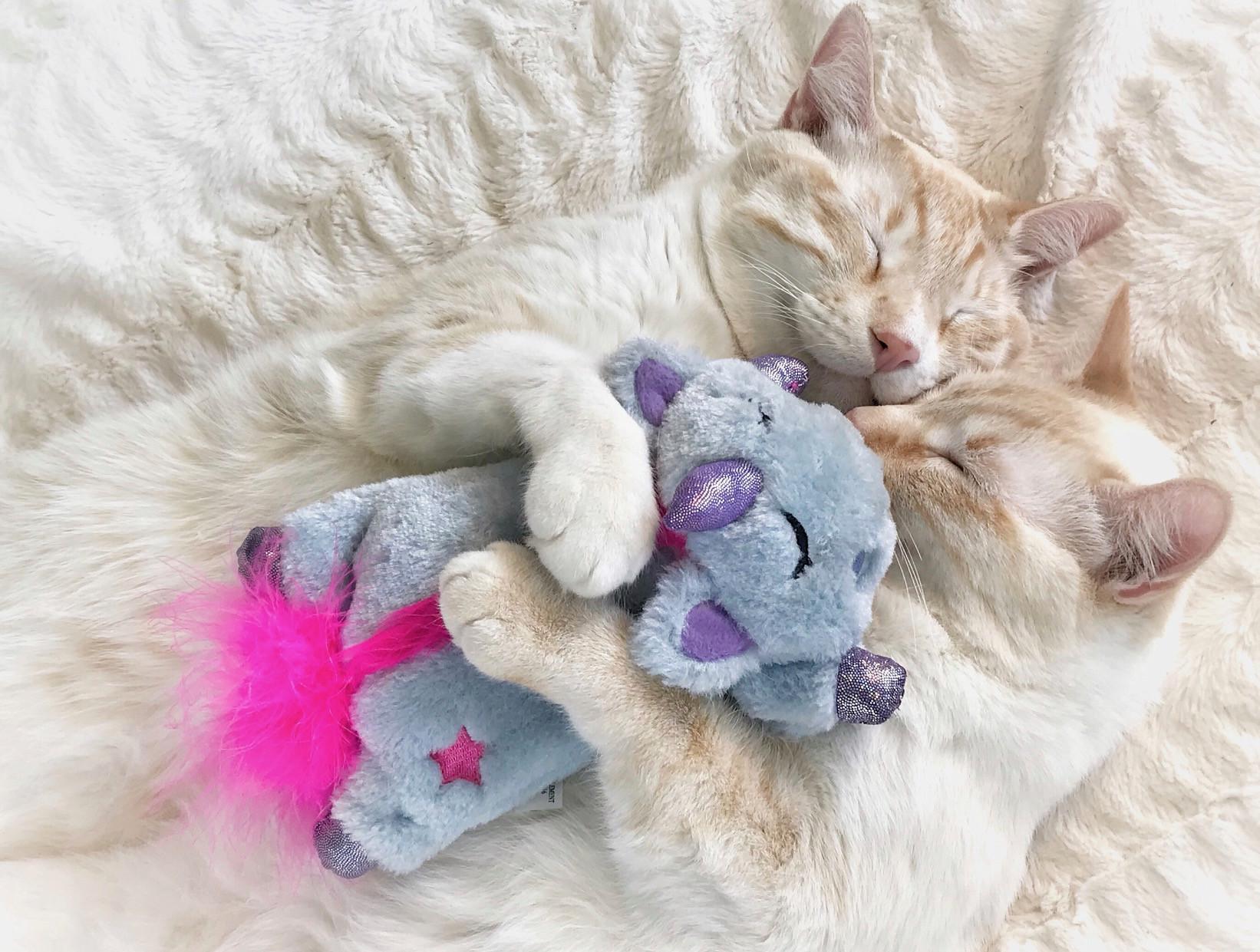 Petstages Unicorn Cuddle Pal voor de kat