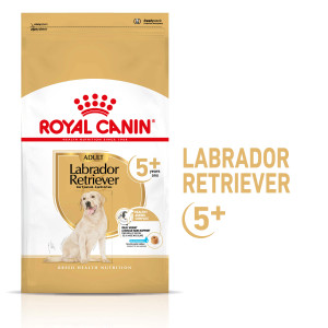 Royal Canin Adult 5+ Labrador Retriever hondenvoer 3 kg