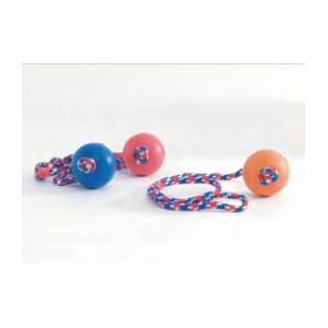Massief rubberen bal aan touw voor de hond Groot