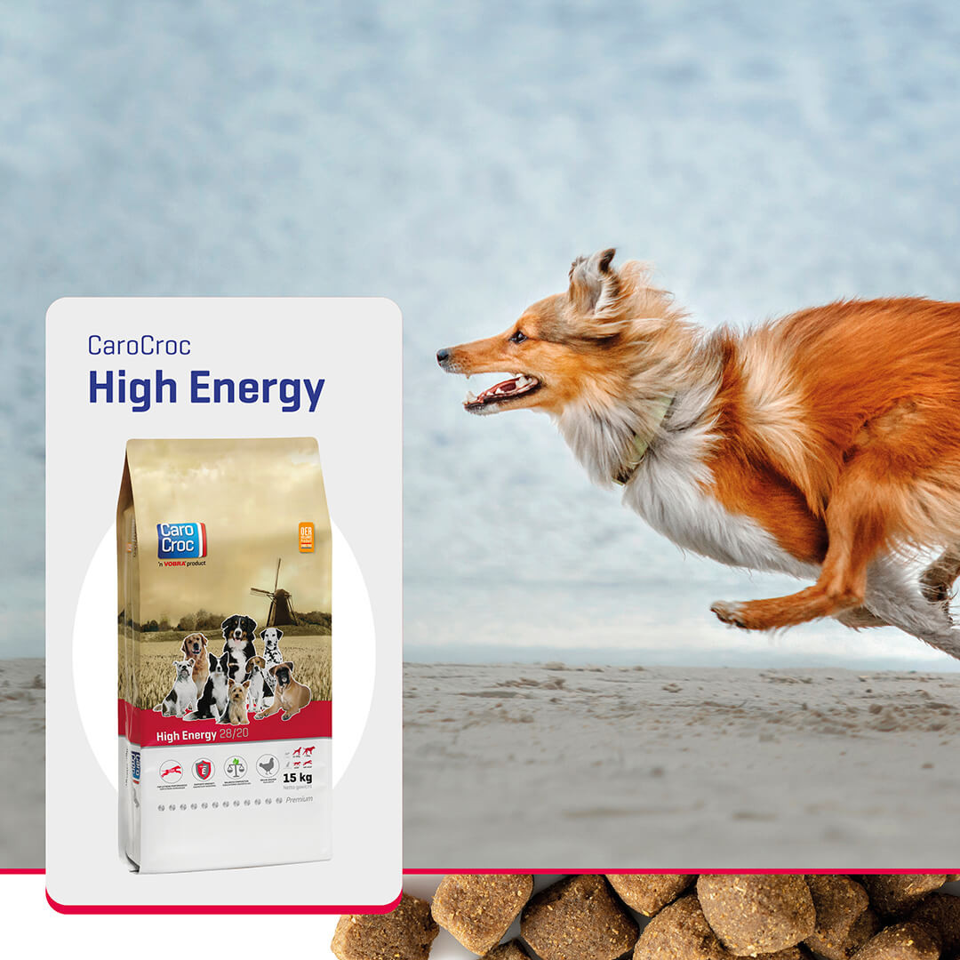Carocroc High Energy (28/20) Hondenvoer