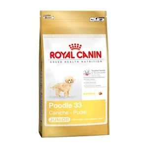 Royal Canin Poodle 33 junior hondenvoer