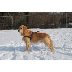 Hurtta Padded Harness 35 cm voor de hond Blauw Groen