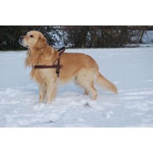 Hurtta Padded Harness 45 cm voor de hond Bruin rood OP is OP