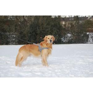 Hurtta Padded Harness 110 cm voor de hond bruin rood