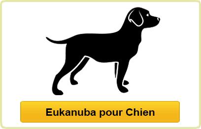 Eukanuba Chien