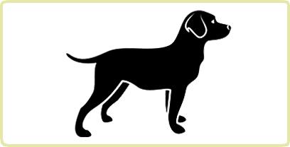 Royal Canin Hund