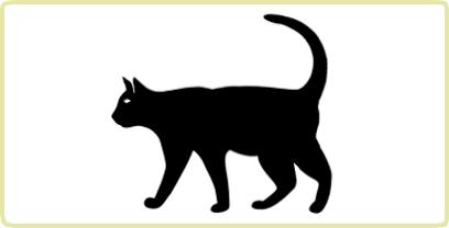 Royal Canin Katze