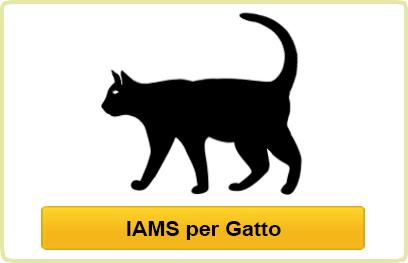 IAMS per gatto