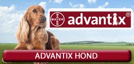 Advantix voor de Hond