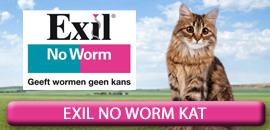 Exil No Worm Kat