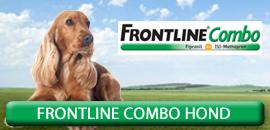 Frontline Combo Hond