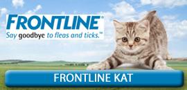 Frontline Kat