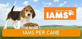 IAMS PER CANE