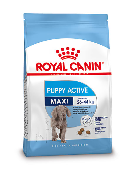 Royal Canin Maxi Puppy Active hondenvoer 15 kg
